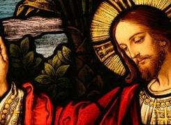 A Paz de Cristo